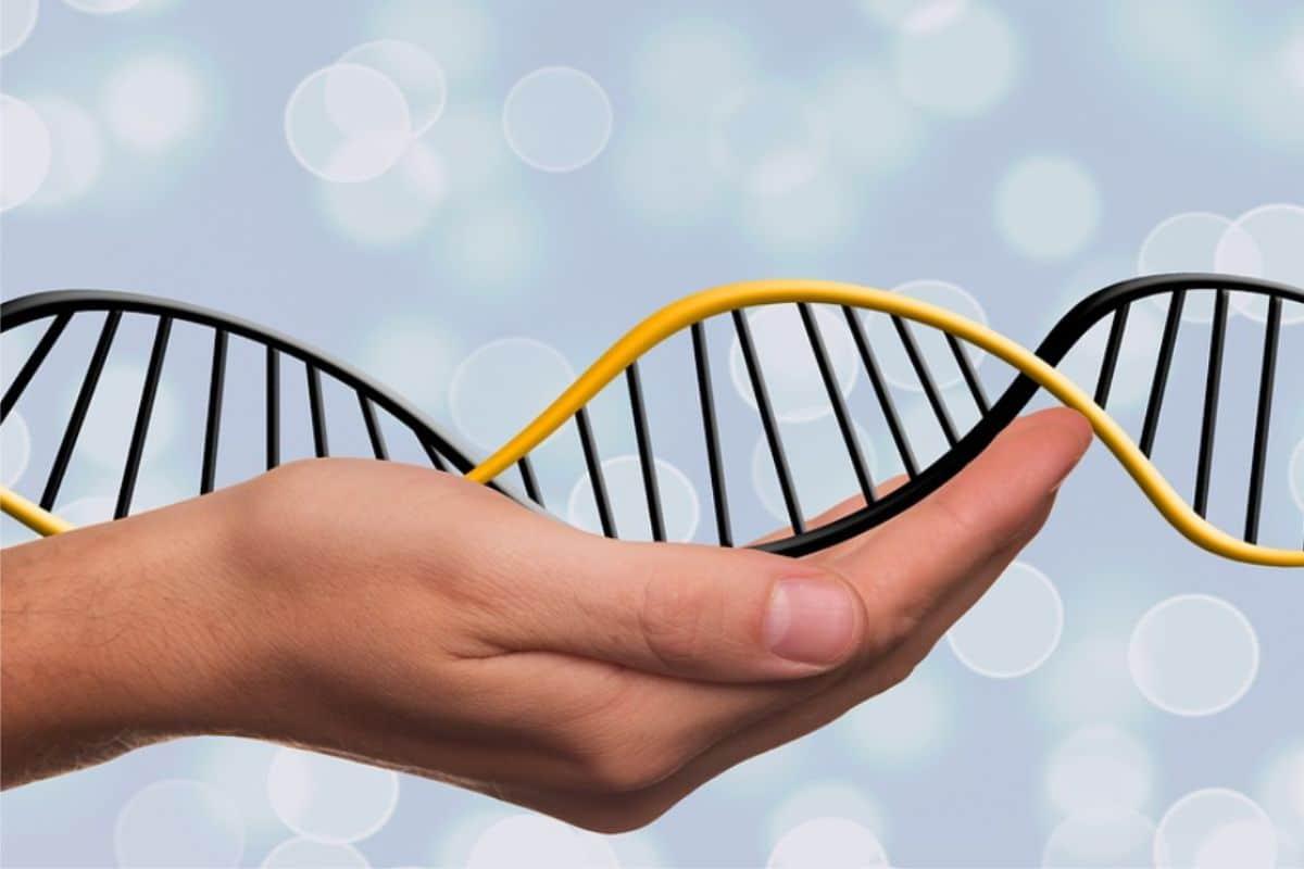 Xét nghiệm ADN bằng tóc